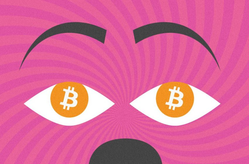 Bitcoin's Value Is All in the Eye of the 'Bithodler'