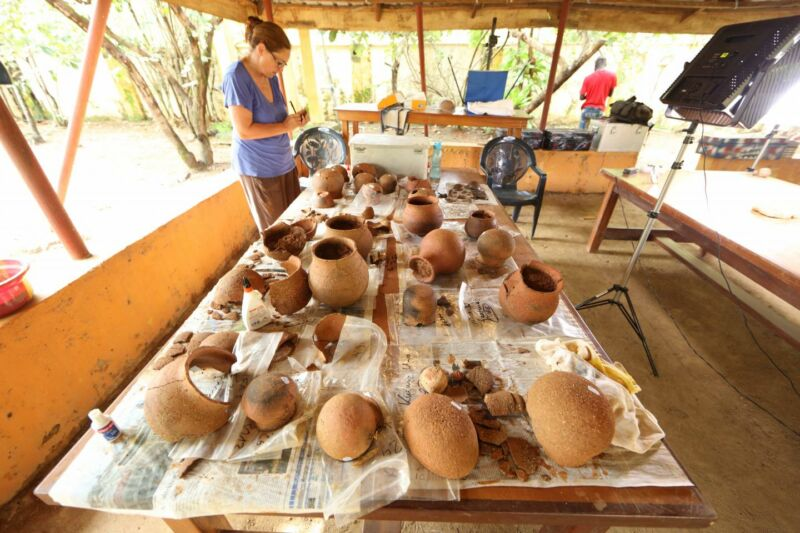 Africa's first Iron Age culture had a sweet tooth