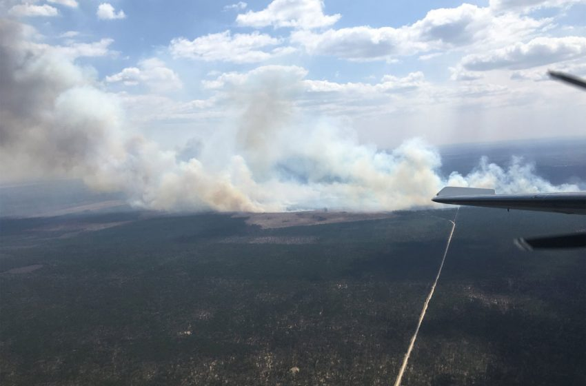 Wildfires scorch thousands of acres in Michigan