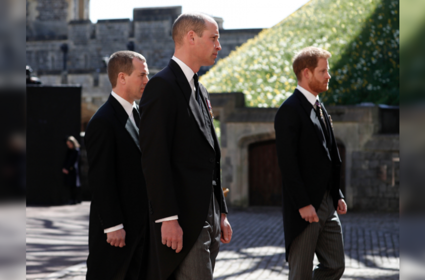 William, Harry stand apart for Philip's funeral