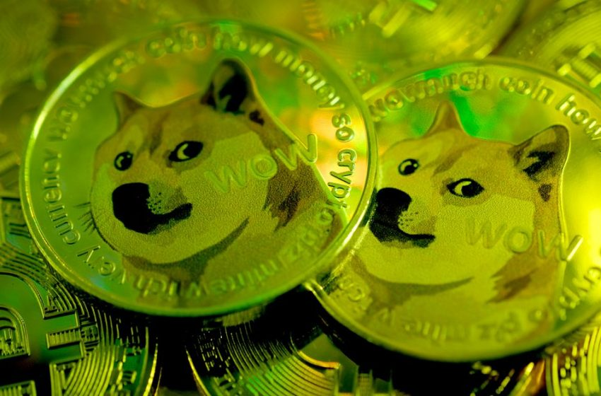 Bitcoin, dogecoin, crypto, and the era of meme investing