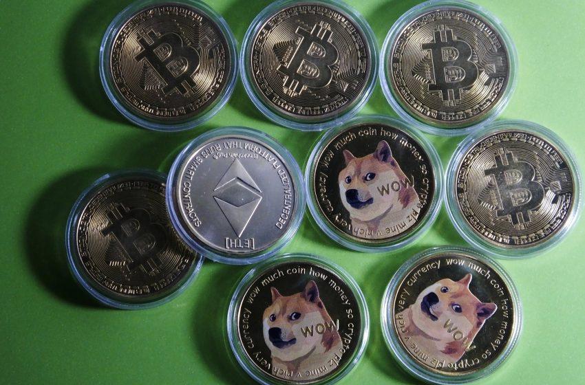 New Dogecoin or Ponzi scheme?