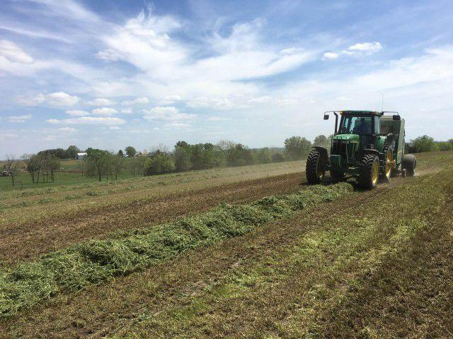 Be Aware of Hay Scams When Buying and Selling Online | AG