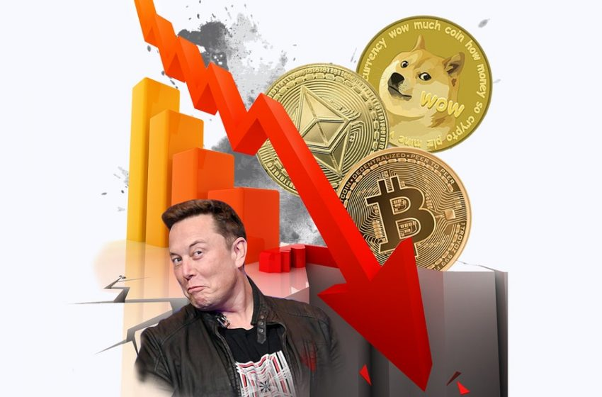 Why the Cryptocurrency Market is in Shambles Right Now