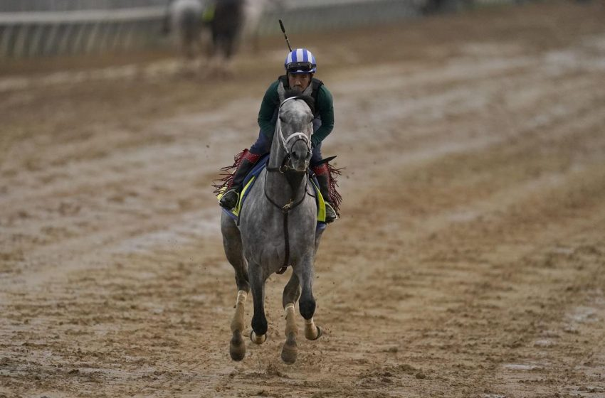 Kentucky Derby 2021: Saturday Odds, Bets You Should Make, And Rock Your World's Chance To Take Down Essential Quality