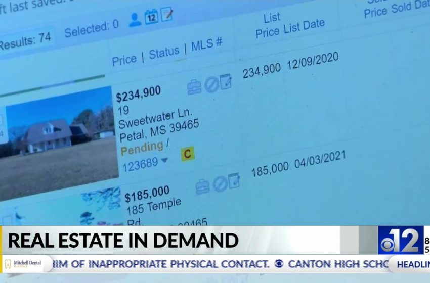 Real estate industry sees sale increase since COVID-19 pandemic