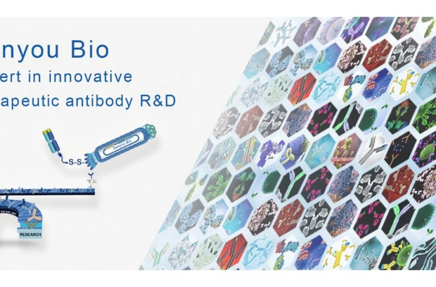 Sanyou Biopharmaceuticals completes series B financing and secures its leading role in innovative antibody drug discovery