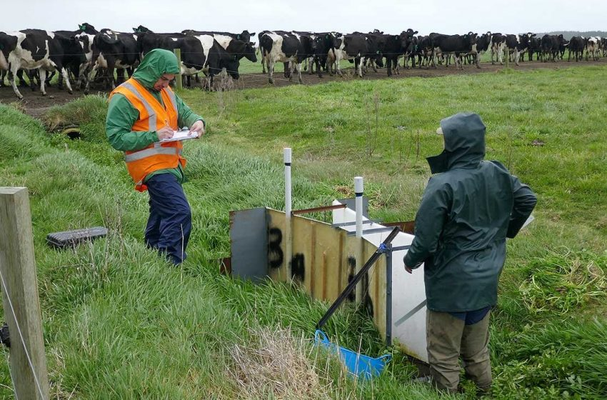 New technology helps farmers to remove nitrates from drainage