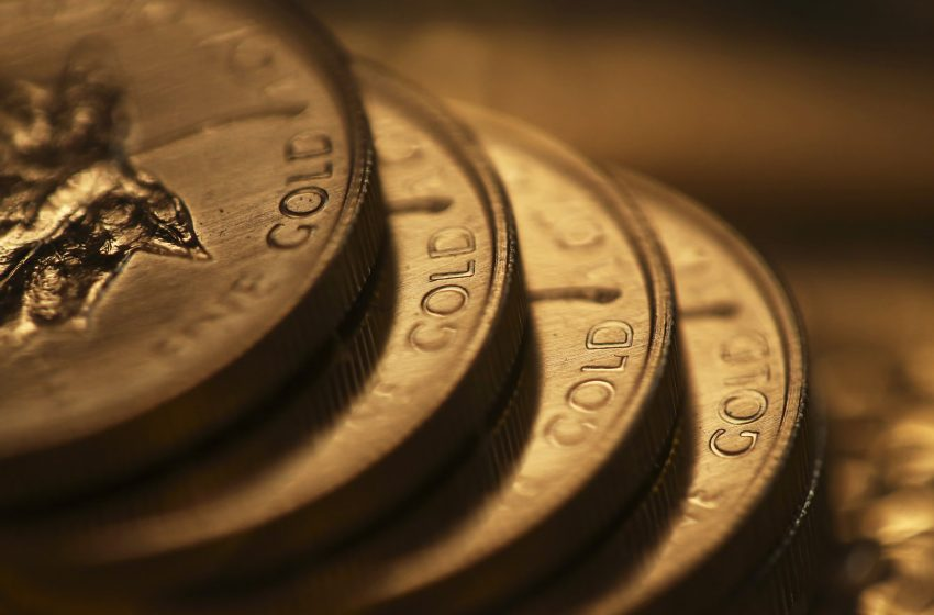 Gold steady as lower bond yields negate pressure from firm dollar