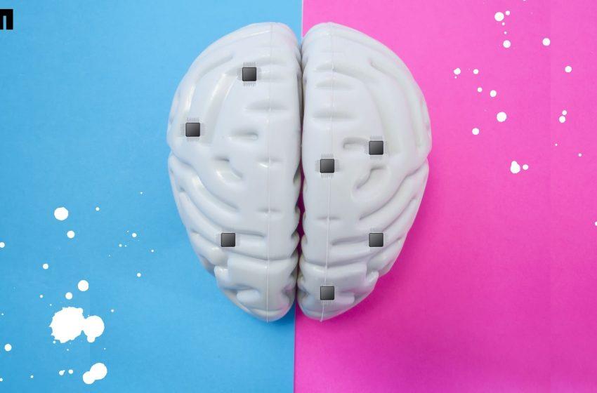 Inside Neurograins, A New Technology To Record Brain Impulses