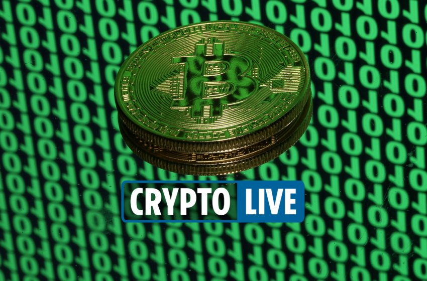Cryptocurrency latest news – Walmart say crypto announcement is 'FAKE' after Floki Dogecoin soars on Musk Shibu Inu pic
