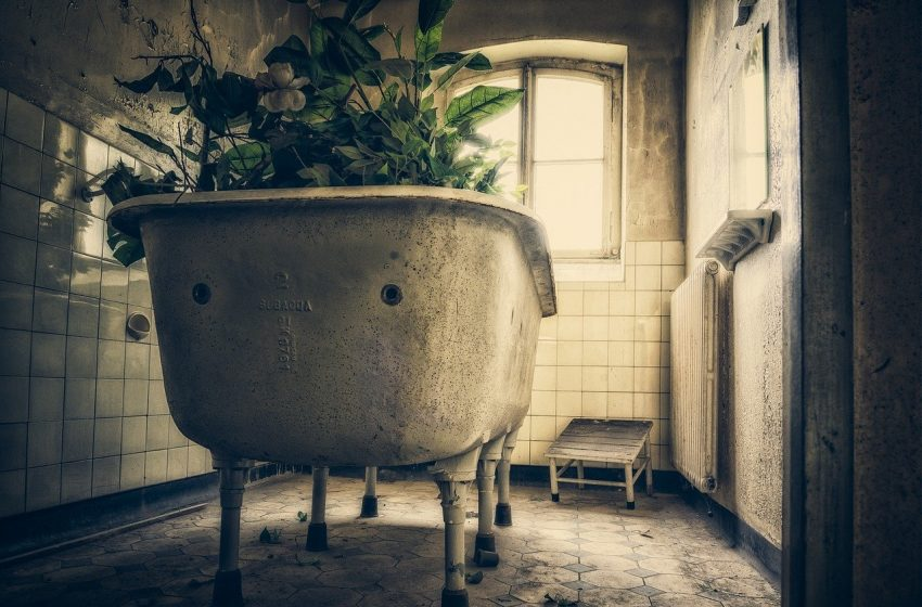 Vacant zombie properties decline as foreclosure moratorium ends
