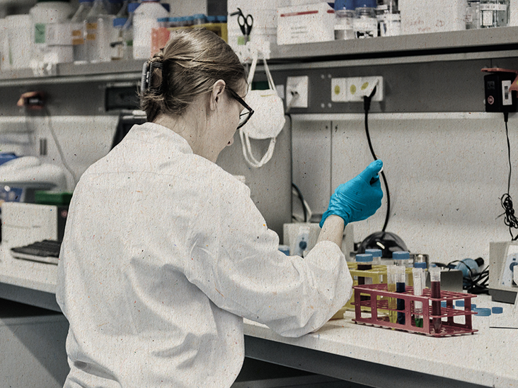 A new gut virus identified