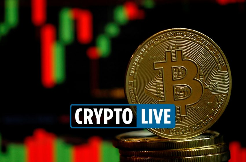 Cryptocurrency price news – ISO 20022 to be implemented by all federal banks as Shiba Inu coin 'could be on RobinHood'
