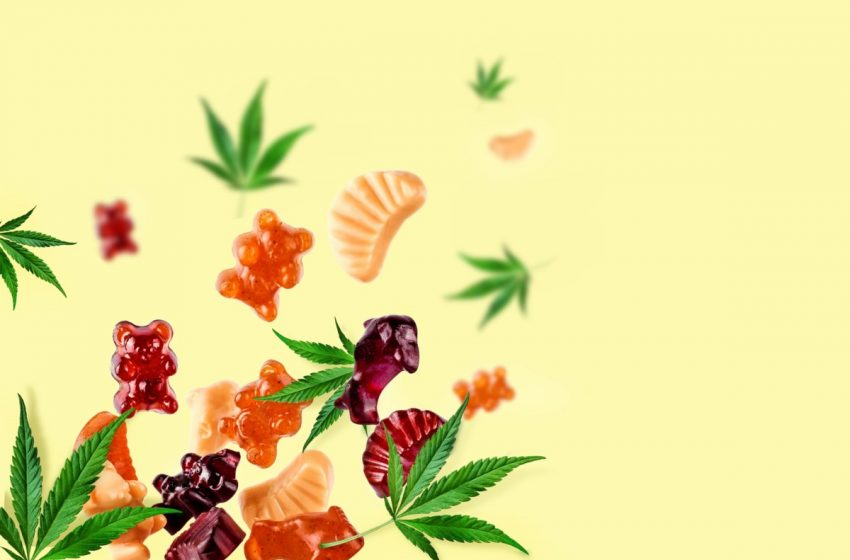 Cannabis gummy scam illustrates need for media literacy